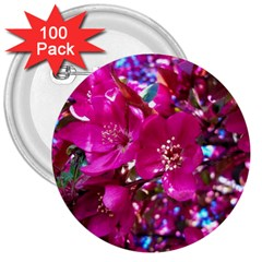 Pretty In Fuchsia 2 3  Buttons (100 Pack)  by dawnsiegler
