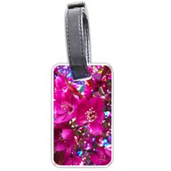 Pretty In Fuchsia 2 Luggage Tags (one Side)  by dawnsiegler