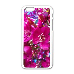 Pretty In Fuchsia 2 Apple Iphone 6/6s White Enamel Case by dawnsiegler