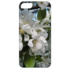 Pure And Simple Apple Iphone 5 Classic Hardshell Case by dawnsiegler