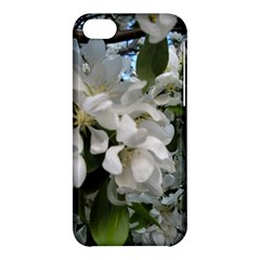 Pure And Simple Apple Iphone 5c Hardshell Case