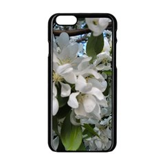 Pure And Simple Apple Iphone 6/6s Black Enamel Case by dawnsiegler