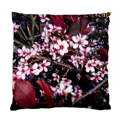 Morning Sunrise Standard Cushion Case (two Sides) by dawnsiegler