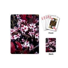 Morning Sunrise Playing Cards (mini)  by dawnsiegler