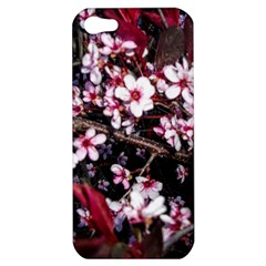 Morning Sunrise Apple Iphone 5 Hardshell Case by dawnsiegler