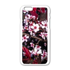 Morning Sunrise Apple Iphone 6/6s White Enamel Case by dawnsiegler