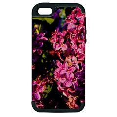 Lilacs Apple Iphone 5 Hardshell Case (pc+silicone) by dawnsiegler