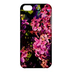 Lilacs Apple Iphone 5c Hardshell Case by dawnsiegler