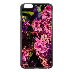 Lilacs Apple Iphone 6 Plus/6s Plus Black Enamel Case by dawnsiegler