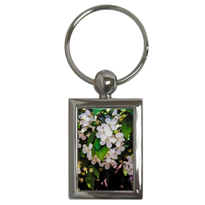 Tree Blossoms Key Chains (Rectangle)