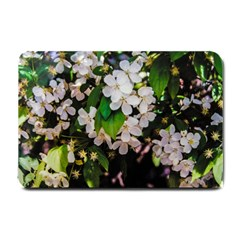 Tree Blossoms Small Doormat  by dawnsiegler