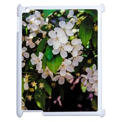 Tree Blossoms Apple Ipad 2 Case (white) by dawnsiegler
