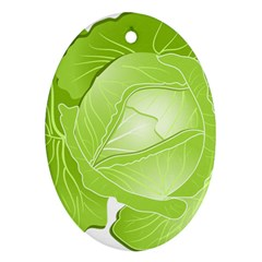 Cabbage Leaf Vegetable Green Ornament (oval) by Mariart