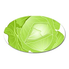 Cabbage Leaf Vegetable Green Oval Magnet by Mariart