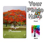 arboretum-back3-deckB-x1 - Playing Cards 54 Designs