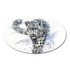 Snow Leopard Oval Magnet by kostart