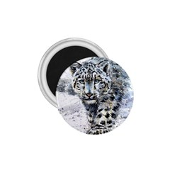 Snow Leopard  1 75  Magnets by kostart