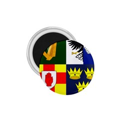 Arms Of Four Provinces Of Ireland  1 75  Magnets by abbeyz71