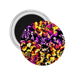 Purple Yellow Flower Plant 2 25  Magnets