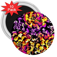 Purple Yellow Flower Plant 3  Magnets (10 Pack)
