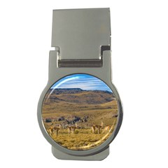 Group Of Vicunas At Patagonian Landscape, Argentina Money Clips (round)  by dflcprints