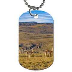 Group Of Vicunas At Patagonian Landscape, Argentina Dog Tag (one Side)