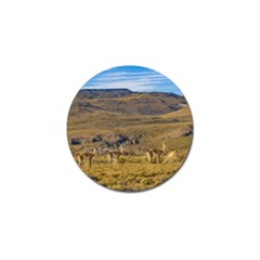 Group Of Vicunas At Patagonian Landscape, Argentina Golf Ball Marker (4 Pack) by dflcprints