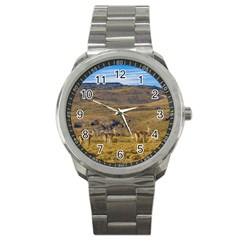 Group Of Vicunas At Patagonian Landscape, Argentina Sport Metal Watch by dflcprints