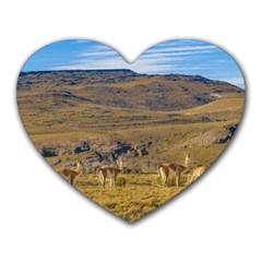 Group Of Vicunas At Patagonian Landscape, Argentina Heart Mousepads by dflcprints