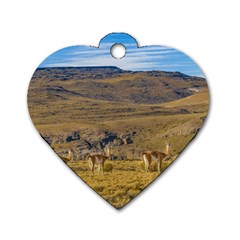 Group Of Vicunas At Patagonian Landscape, Argentina Dog Tag Heart (one Side) by dflcprints