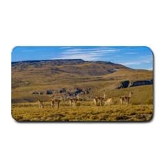 Group Of Vicunas At Patagonian Landscape, Argentina Medium Bar Mats by dflcprints