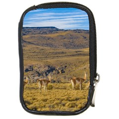 Group Of Vicunas At Patagonian Landscape, Argentina Compact Camera Cases by dflcprints