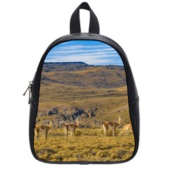Group Of Vicunas At Patagonian Landscape, Argentina School Bags (small)  by dflcprints