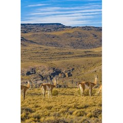 Group Of Vicunas At Patagonian Landscape, Argentina 5 5  X 8 5  Notebooks by dflcprints