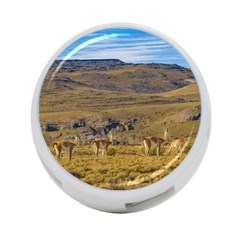Group Of Vicunas At Patagonian Landscape, Argentina 4 Port Usb Hub (one Side) by dflcprints