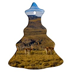 Group Of Vicunas At Patagonian Landscape, Argentina Ornament (christmas Tree)  by dflcprints
