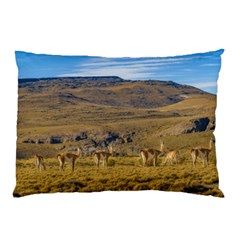 Group Of Vicunas At Patagonian Landscape, Argentina Pillow Case (two Sides) by dflcprints