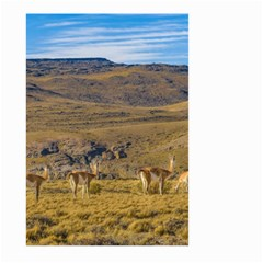 Group Of Vicunas At Patagonian Landscape, Argentina Large Garden Flag (two Sides) by dflcprints