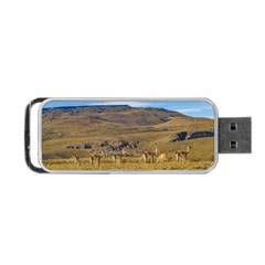 Group Of Vicunas At Patagonian Landscape, Argentina Portable Usb Flash (one Side) by dflcprints