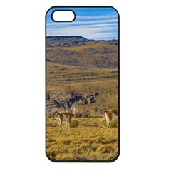 Group Of Vicunas At Patagonian Landscape, Argentina Apple Iphone 5 Seamless Case (black) by dflcprints