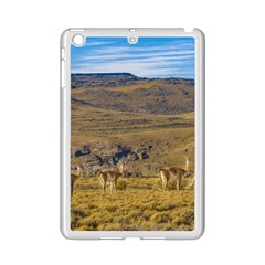 Group Of Vicunas At Patagonian Landscape, Argentina Ipad Mini 2 Enamel Coated Cases by dflcprints