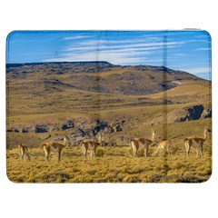 Group Of Vicunas At Patagonian Landscape, Argentina Samsung Galaxy Tab 7  P1000 Flip Case by dflcprints