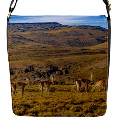 Group Of Vicunas At Patagonian Landscape, Argentina Flap Messenger Bag (s) by dflcprints