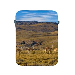Group Of Vicunas At Patagonian Landscape, Argentina Apple Ipad 2/3/4 Protective Soft Cases by dflcprints