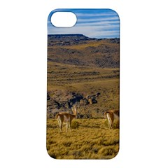Group Of Vicunas At Patagonian Landscape, Argentina Apple Iphone 5s/ Se Hardshell Case by dflcprints