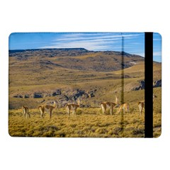 Group Of Vicunas At Patagonian Landscape, Argentina Samsung Galaxy Tab Pro 10 1  Flip Case by dflcprints
