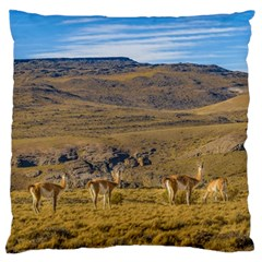 Group Of Vicunas At Patagonian Landscape, Argentina Standard Flano Cushion Case (one Side) by dflcprints