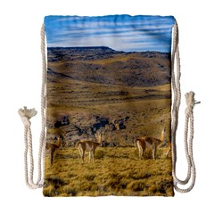 Group Of Vicunas At Patagonian Landscape, Argentina Drawstring Bag (large) by dflcprints