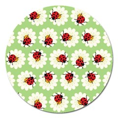 Ladybugs Pattern Magnet 5  (round) by linceazul