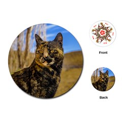 Adult Wild Cat Sitting And Watching Playing Cards (round)  by dflcprints